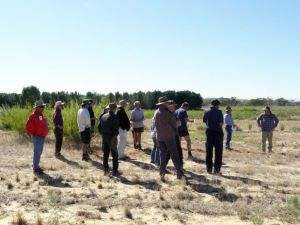 Local farmers inspired by trial field day